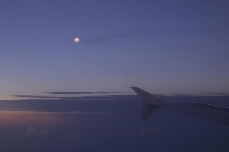 Wingtip Moon
