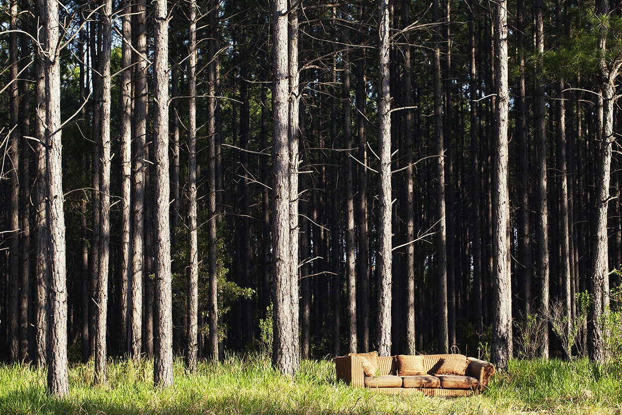 Forest Lounge