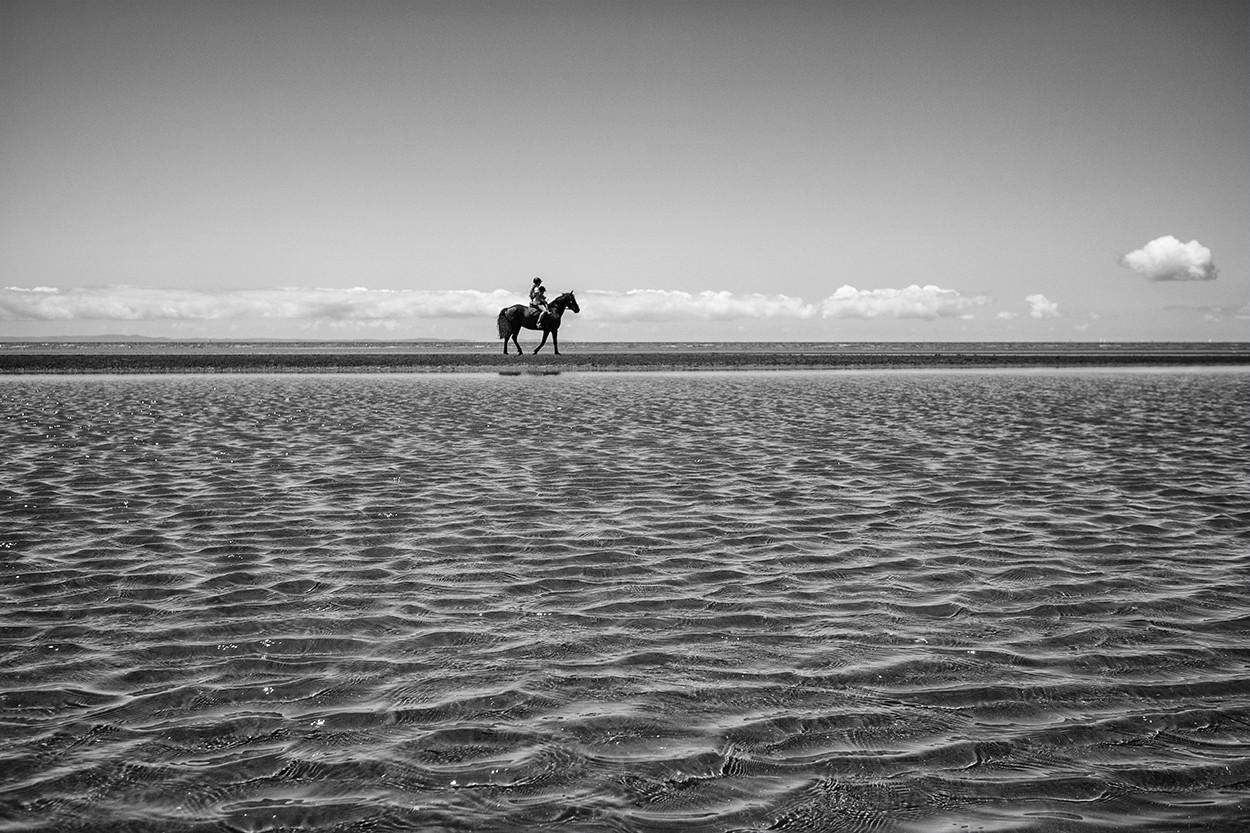 Moreton Horse